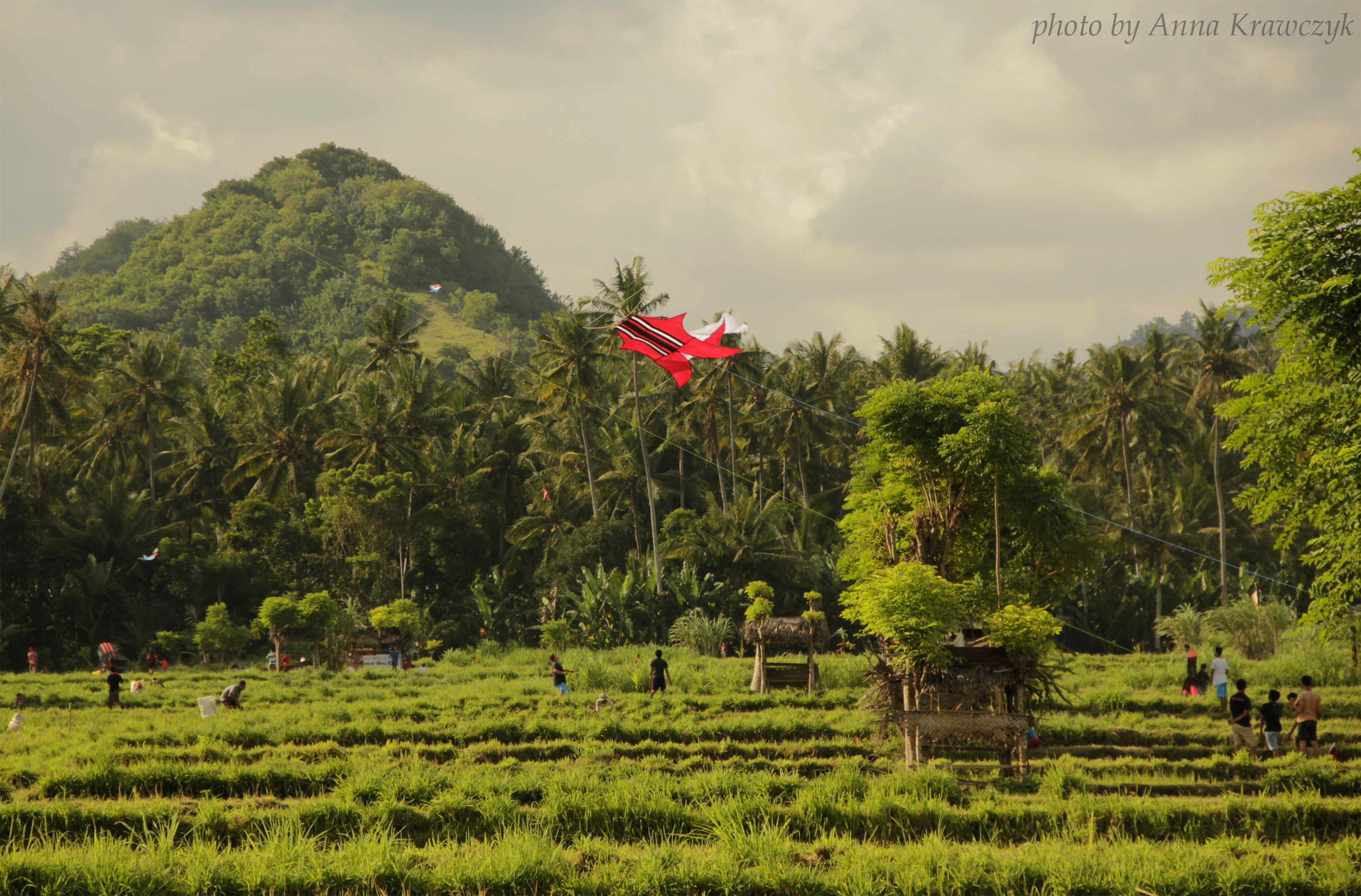Kids playing with kites on rice fields of Candidasa, Bali